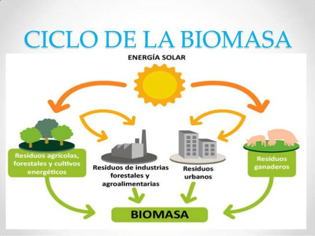 Biomasa y su cliclo